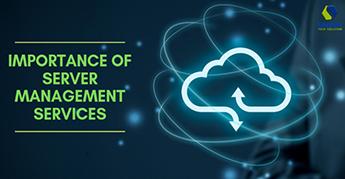 Importance of Server Management Services